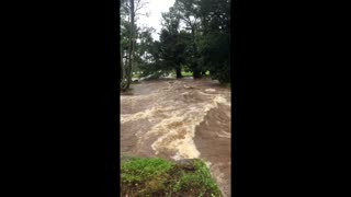 Front Yard Flooded in Hawaii