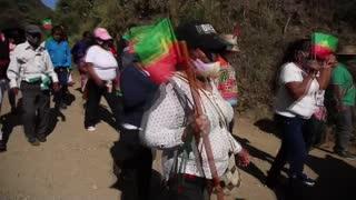 Video: atentado contra senador indígena en el Cauca