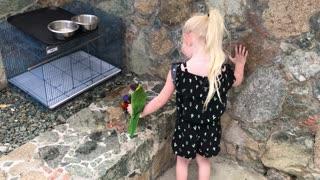 Harp feeds her bird friend