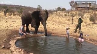 Turista é molhada por elefante africano