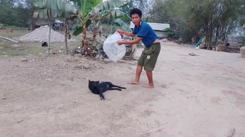 The Man Catch With Funny Dog