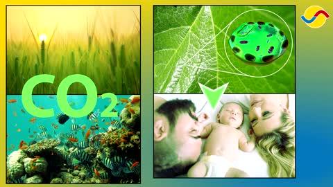 CO2 i Atmosfæren - En film fra KLIMAREALISTENE