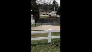 More On Scene Footage of Michigan State Police Standoff in McBain