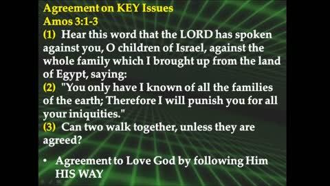 Unity of the Faith