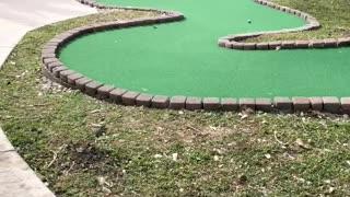 cojo plays adaptive small golf