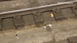 Two rats on train tracks fighting over food