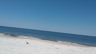 Mexico Beach.