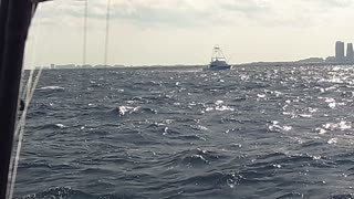 Boat Fishing in Miami