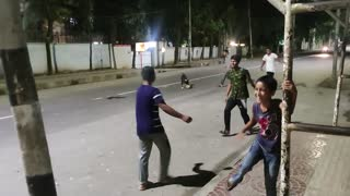 Dog Engages in a Game of Streetside Soccer