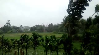 """Recent Cyclone """"YAAS"""" hit in India"""