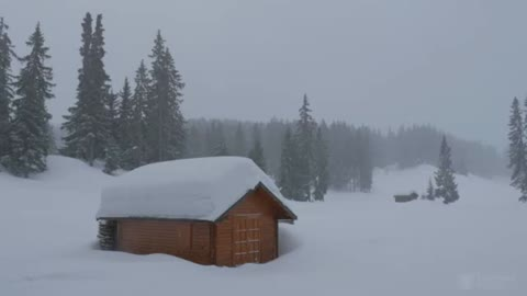 A cabin in the woods during a snow storm