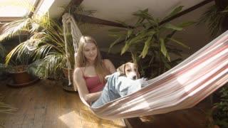 Dog in the hammock