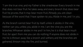 The Gospel of John - Chapter 15