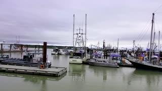 Steveston Marina, Richmond, British Columbia