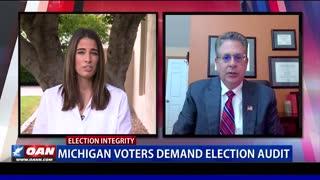 Mich. voters demand election audit