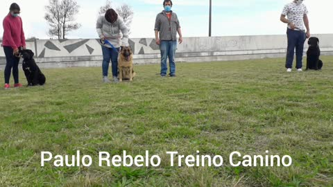 Happy Easter from Paulo Rebelo Treino Canino
