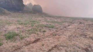 Wildfires sweep across Sardinia