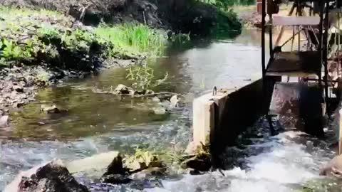 Beautiful water mill