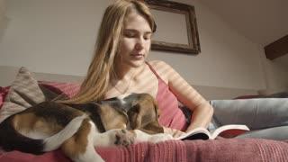 Girl reading with Beagle dog #Shorts