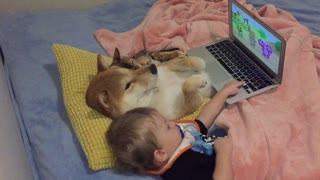 Dog, cat & baby watch cartoons together