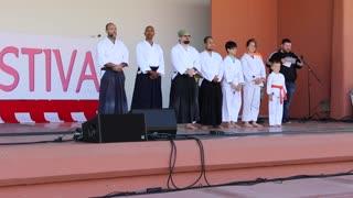 Aikido demonstration.