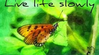 Life is simple - Three Words