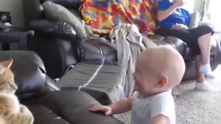 Funny Cats And Babies Playing Together ★ Animals