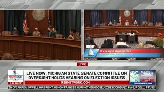 Witness #29 testifies at Michigan House Oversight Committee hearing on 2020 Election. Dec. 2, 2020.
