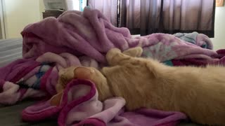 Ivar waking up