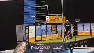 Team Riff Raff 2020 World Championships