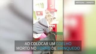 Criança põe coelho morto em forno de brinquedo