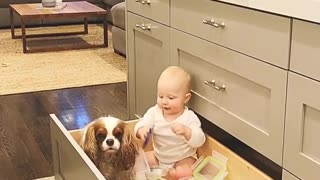 This precious baby & dog playtime is a cuteness overload!