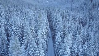 Relaxing Snow Scenes with Calm Music
