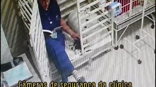 Mujer veterinaria lee cuentos a los perros