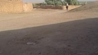 Funny videos best moment hourse