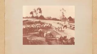 Arcata History