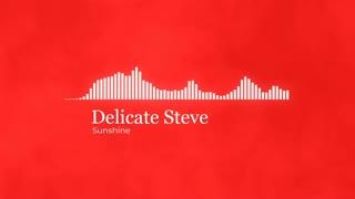 Delicate Steve Sunshine