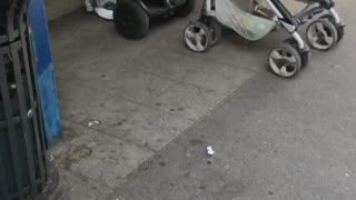 Smart Mom Using a Segway to Push Baby Stroller