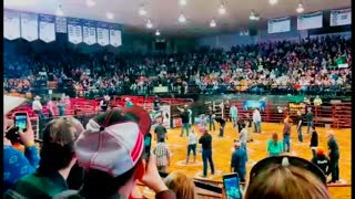 Bull Tosses Contestants During Cowboy Pinball