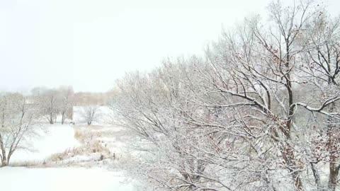 Snow Day Delta Colorado