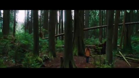 Music video remix