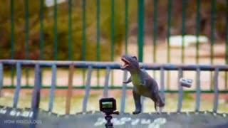How Dinosaurs Got Extinct