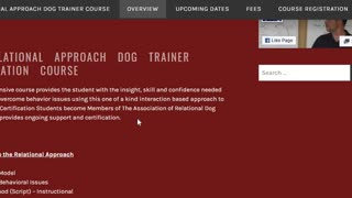 The Relational Approach Dog Trainer Course - Overview
