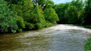 Relax Library: Video 71.River Flowing Downstream