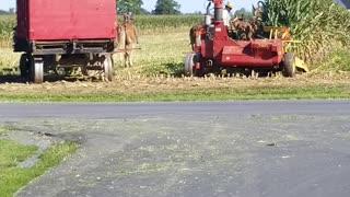 Corn Harvest Coordination