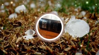 Holy Bible Exodus chapter 9