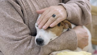 Older Woman Petting Her Dog Head With Love