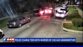 Police charge teen with murder of Chicago grandmother