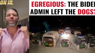 Biden Admin Left The DOGS Behind!