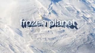 Frozen Planet: Journey to the South Pole